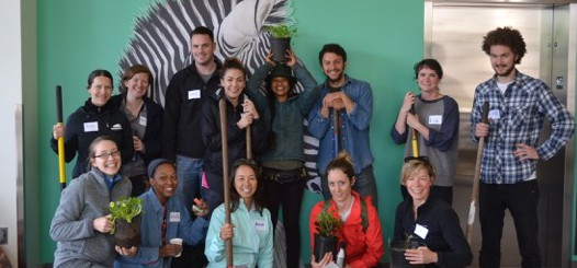 Pollinator Project Planting Party! April 24th
