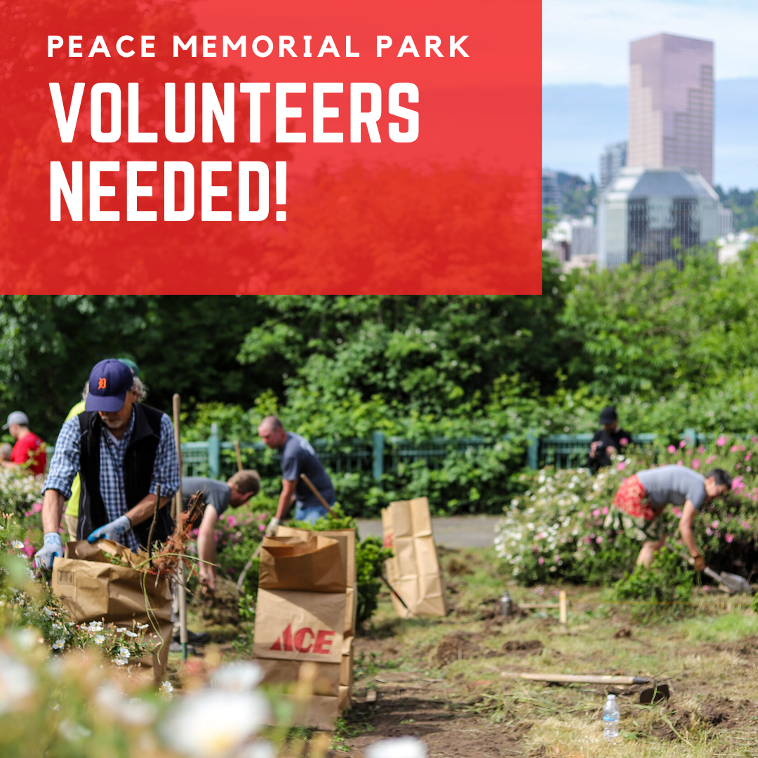 Peace Memorial Park, Eastbank Esplanade, Duckworth Dock Clean-up