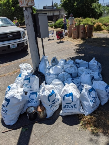 Many of the 36 trash bags filled up with 252 pounds of collected garbage!