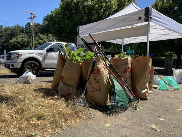 Tree cuttings, invasive species, and weeds all being collected to be composted