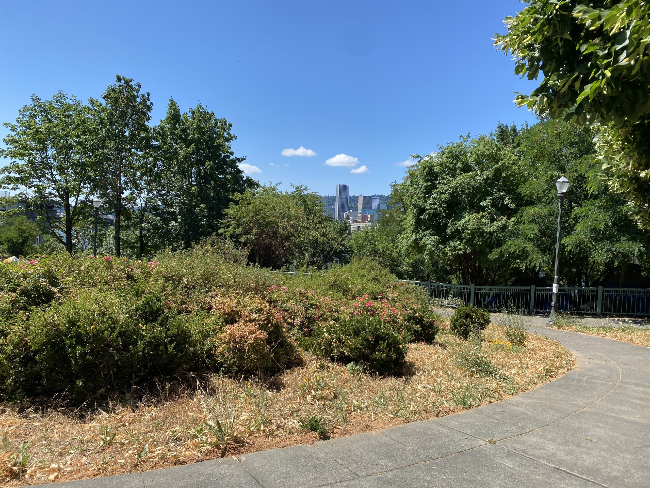 Cleaning Up the Park: 360 Hours & 3,300 Pounds of Trash